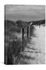 To the beach, Canvas Print