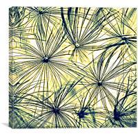 Dandelion Seedheads coloured sketch., Canvas Print