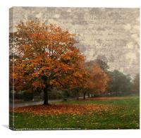 Winter In Norfolk., Canvas Print