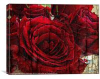 Love Roses., Canvas Print
