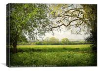 Rural Norfolk., Canvas Print