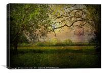 Rural Norfolk Sunset., Canvas Print