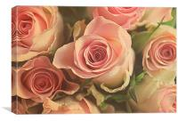 roses for you., Canvas Print
