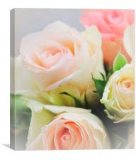 Love roses .., Canvas Print