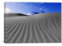 Norfolk Sand Dunes, Canvas Print