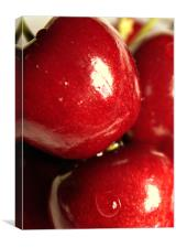 Cherry Cherry, Canvas Print