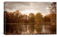 Dunham Pond, Canvas Print