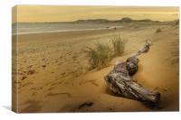 Morfa Conwy Beach, Canvas Print