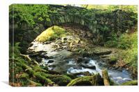 The last bridge, Canvas Print