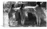 Fairy Triplets
