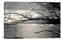 Winter Sunlight on Loch Carron, Canvas Print