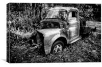 For Sale 1 Careful Owner, Canvas Print
