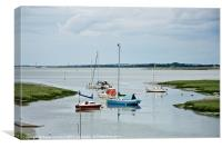 River Medway Pleasure Boats, Canvas Print
