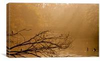 Kelsey Park Bridge Beckenham, Canvas Print