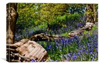 Bluebells and Trees, Canvas Print