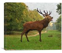 Red Deer Painting, Canvas Print