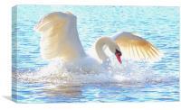 The White Swan, Canvas Print