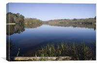 Virginia Water Lakes in Surrey, Canvas Print