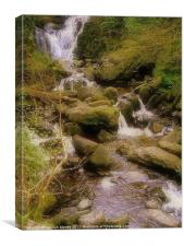 Killarney Brook, Canvas Print