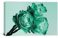 Mint Rose Trio, Canvas Print
