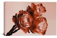 Rusty Rose Trio, Canvas Print