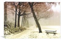 Winter Serenity, Canvas Print