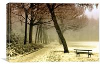Cold Tranquility, Canvas Print