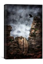 Flight of the Raven, Canvas Print