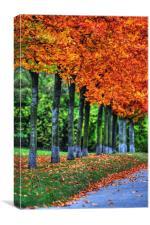 Autumn Prague, Canvas Print