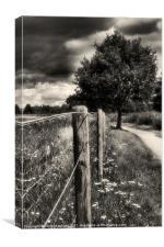 River Walk, Canvas Print