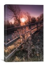 Frosty Morning Sunrise, Canvas Print