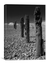 Winchelsea Beach, Canvas Print