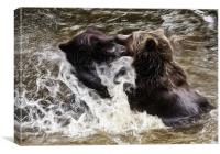 Brown Bears, Canvas Print