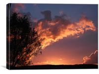 Sky glowing pink, Canvas Print