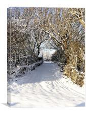 Cwyfan Snow Walk, Canvas Print