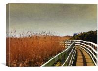 Rhosneigr Boardwalk, Canvas Print