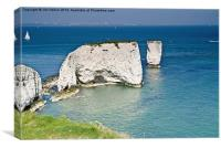 Old Harry and his wife, Canvas Print