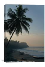 Palm Trees and Varkala Beach, Canvas Print