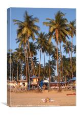 Palm Lined Beach Palolem, Canvas Print