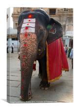 Laxmi the Elephant in Hampi Temple, Canvas Print