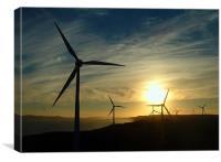 Windmills at Sunset, Canvas Print