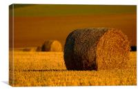 A Roll in the Hay, Canvas Print