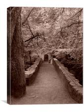 Bridge through the trees, Canvas Print