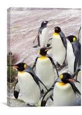 March of the Penguins, Canvas Print
