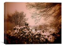 Snowy Warmth, Canvas Print