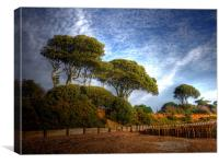 Lepe Country Park, Canvas Print