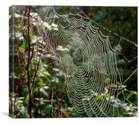 The Web, Canvas Print