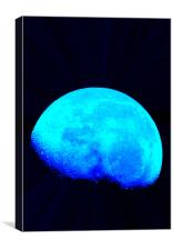 Blue Moon, Canvas Print