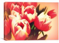 Dreamy Tulips, Canvas Print