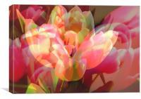 Tulip Mess, Canvas Print